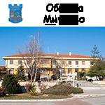 Община Мирково